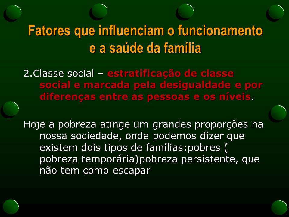 Fatores que influenciam o funcionamento e a saúde da família