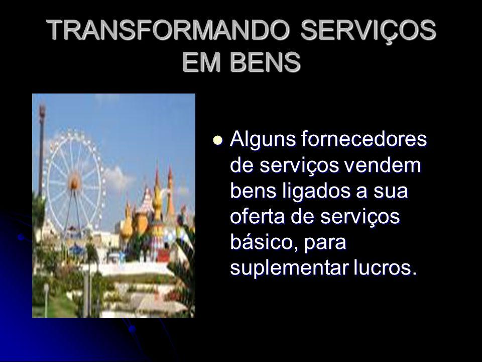 TRANSFORMANDO SERVIÇOS EM BENS