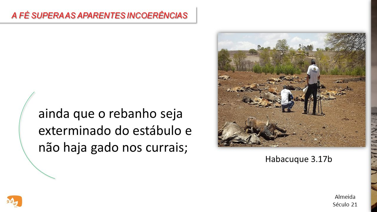 A FÉ SUPERA AS APARENTES INCOERÊNCIAS