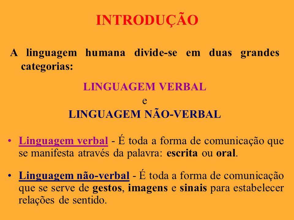 INTRODUÇÃO A linguagem humana divide-se em duas grandes categorias: