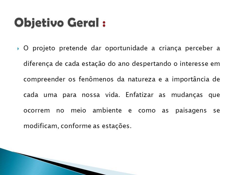 Objetivo Geral :