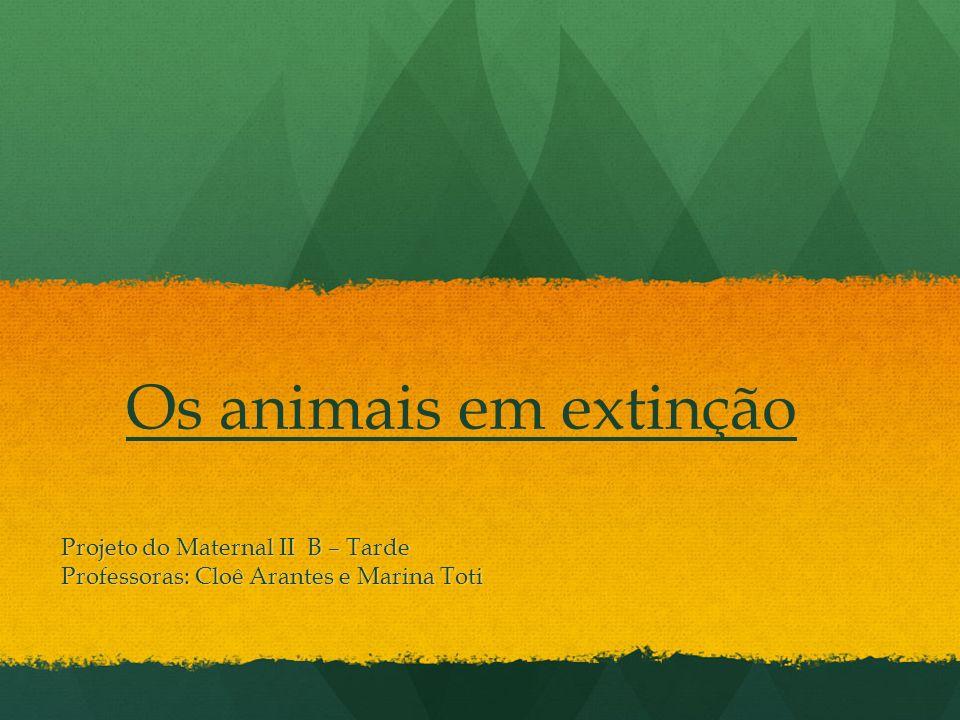 Os animais em extinção Projeto do Maternal II B – Tarde Professoras: Cloê Arantes e Marina Toti