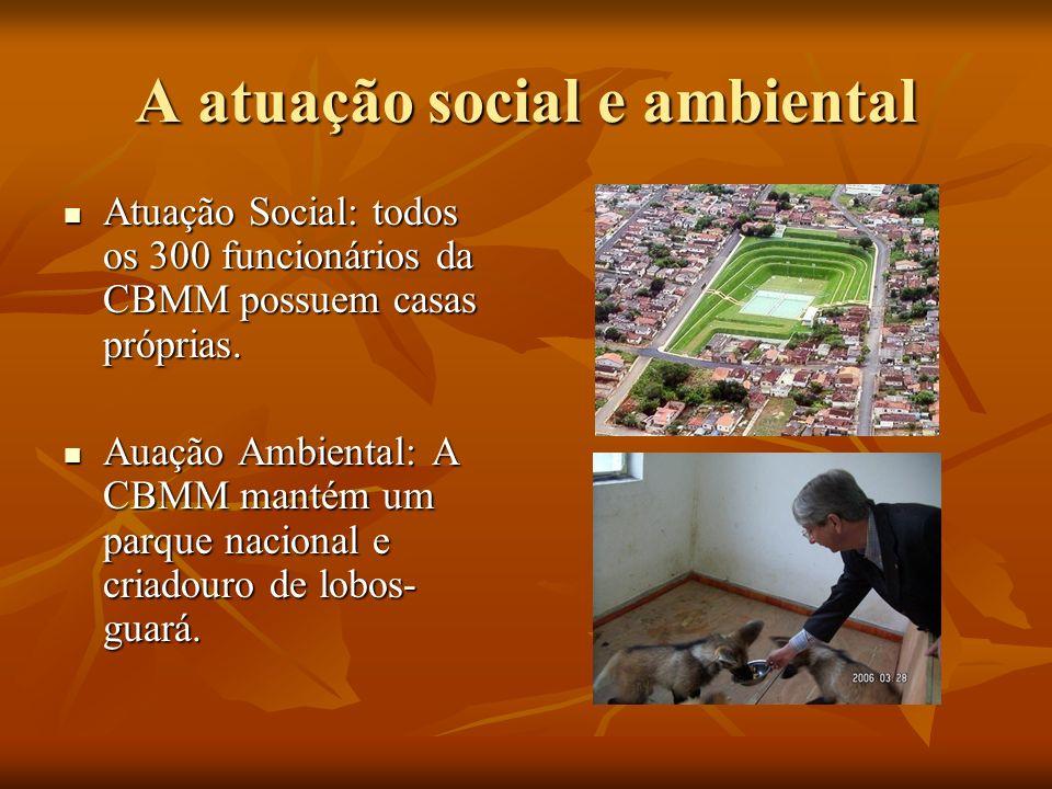 A atuação social e ambiental