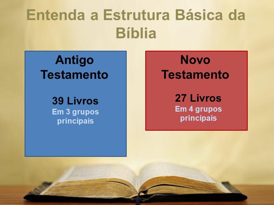 Entenda a Estrutura Básica da Bíblia