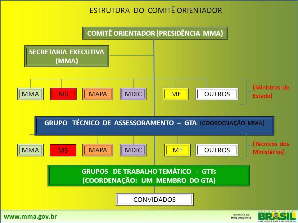 ESTRUTURA DO COMITÊ ORIENTADOR
