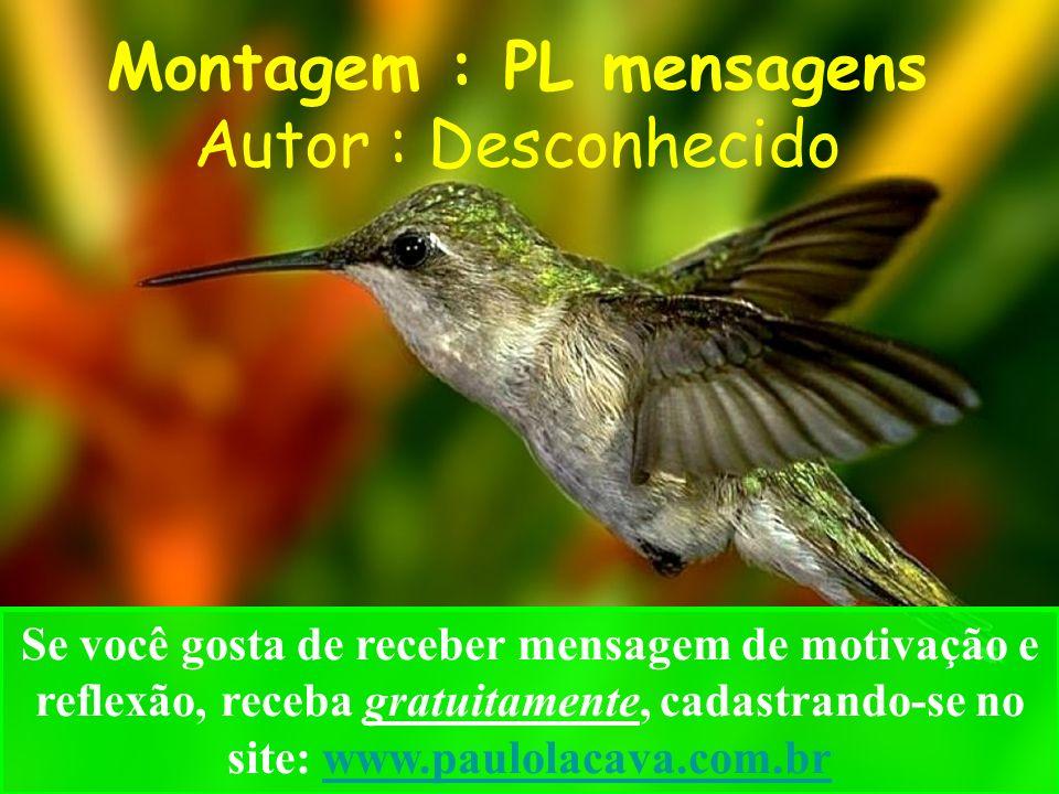 Montagem : PL mensagens