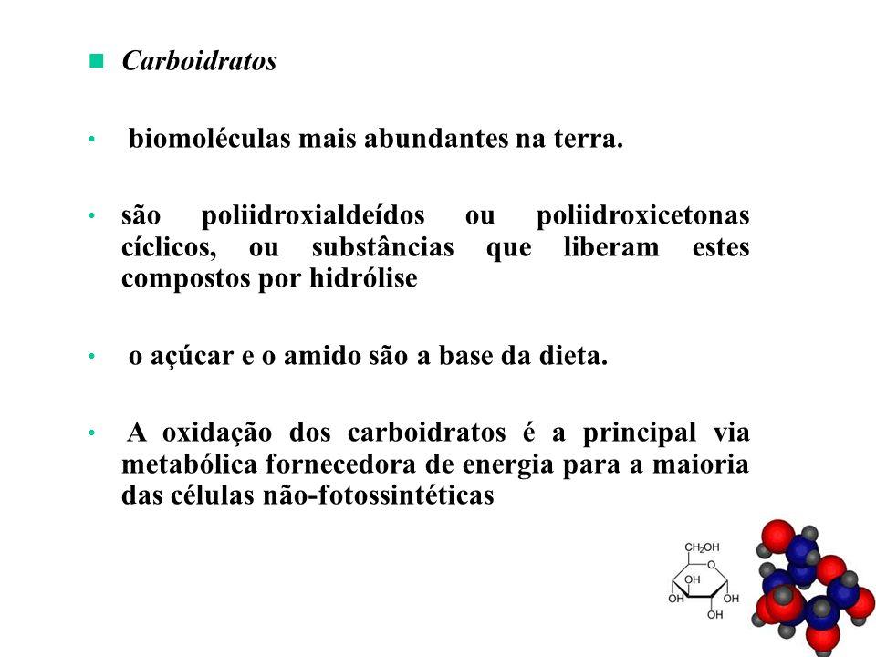 Carboidratos biomoléculas mais abundantes na terra.