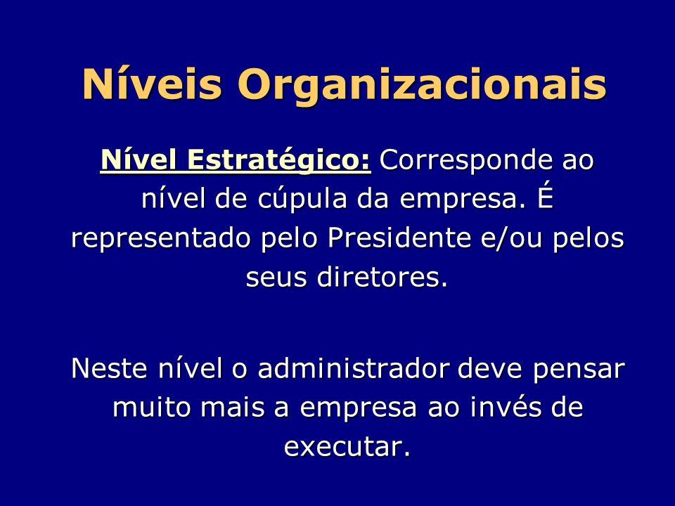Níveis Organizacionais