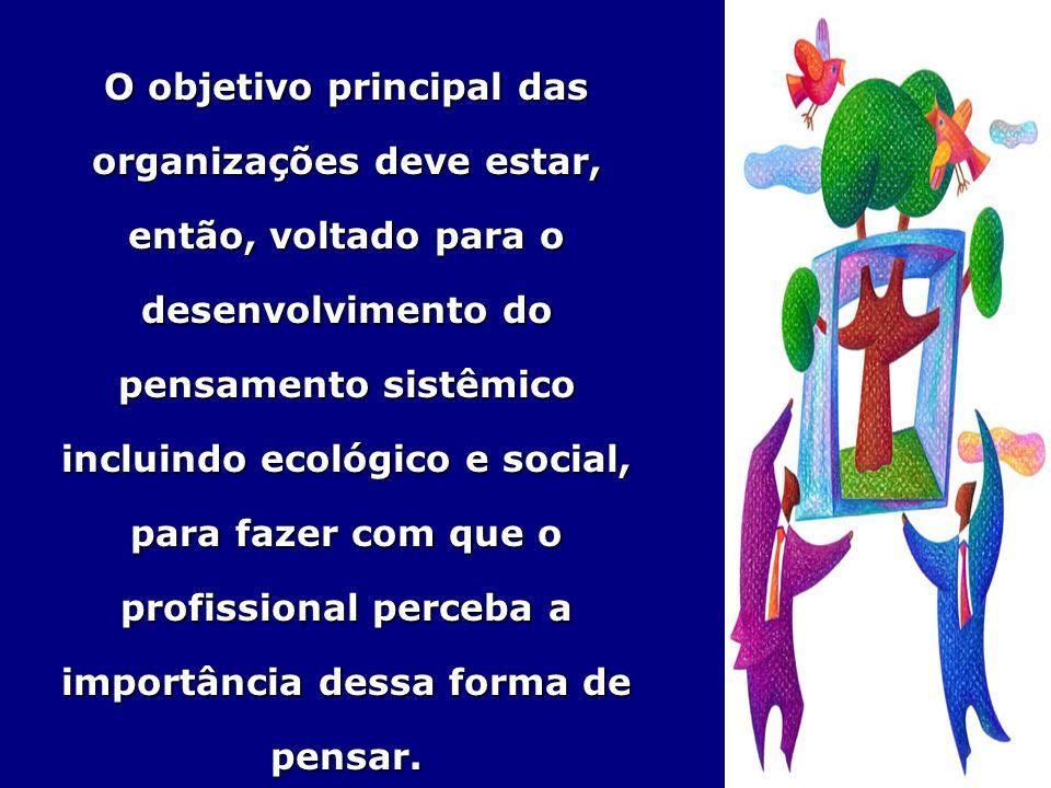 O objetivo principal das organizações deve estar, então, voltado para o desenvolvimento do pensamento sistêmico incluindo ecológico e social, para fazer com que o profissional perceba a importância dessa forma de pensar.