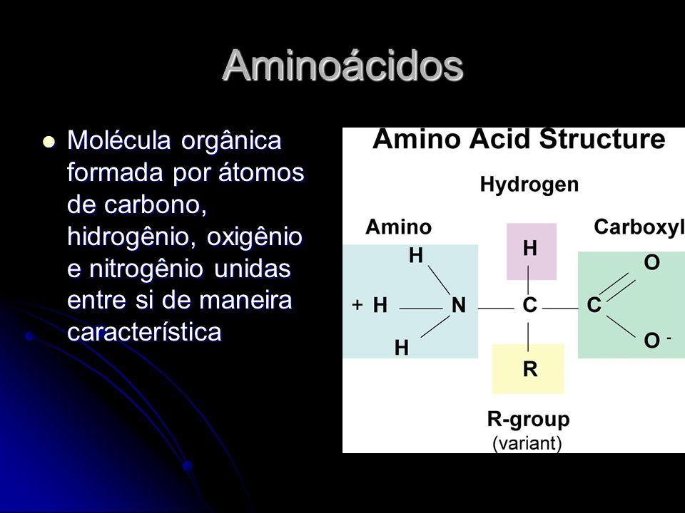 Aminoácidos Molécula orgânica formada por átomos de carbono, hidrogênio, oxigênio e nitrogênio unidas entre si de maneira característica.