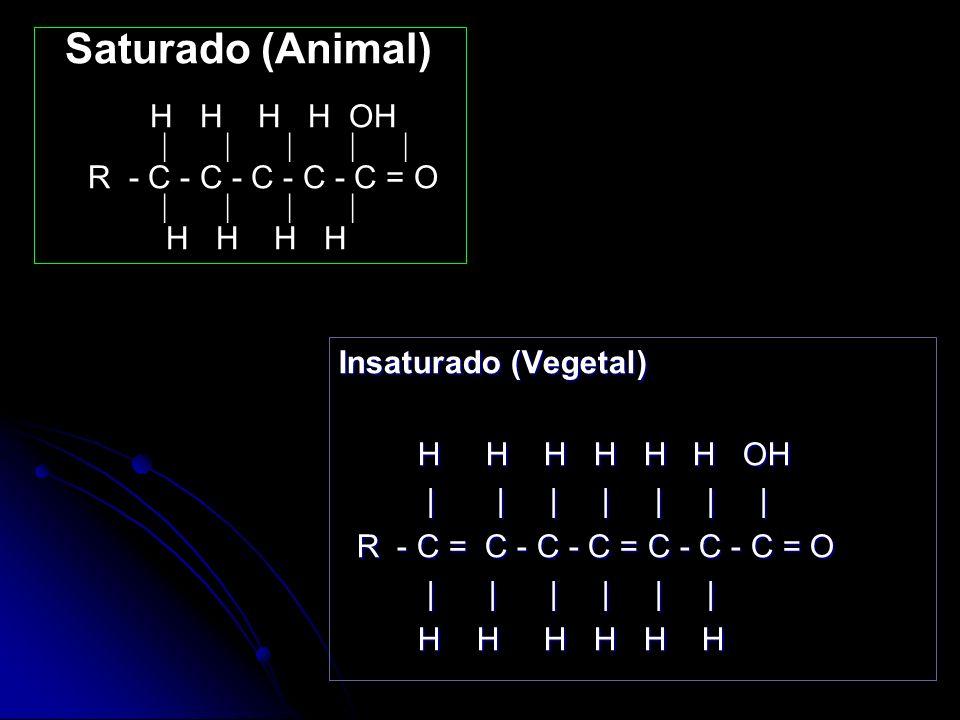 Saturado (Animal) H H H H OH | | | | | R - C - C - C - C - C = O