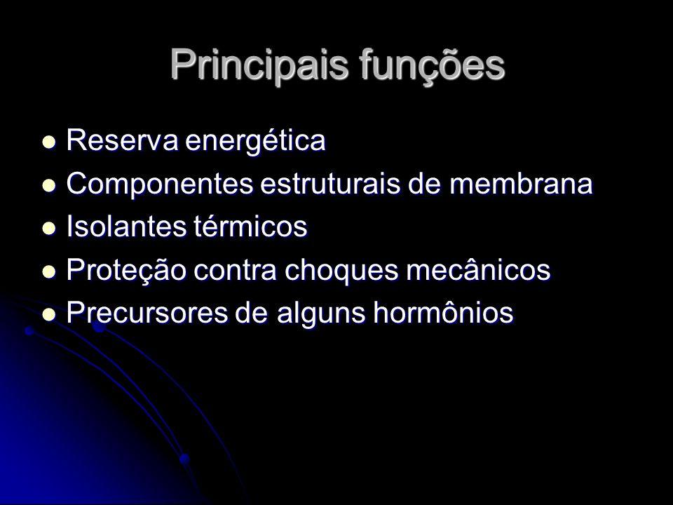 Principais funções Reserva energética