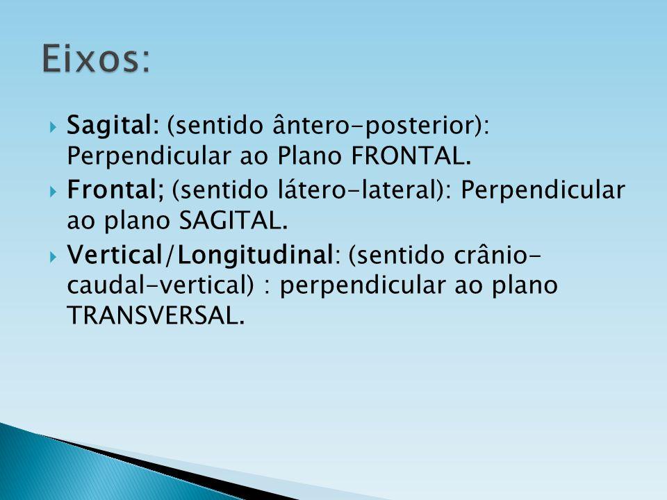 Eixos: Sagital: (sentido ântero-posterior): Perpendicular ao Plano FRONTAL. Frontal; (sentido látero-lateral): Perpendicular ao plano SAGITAL.