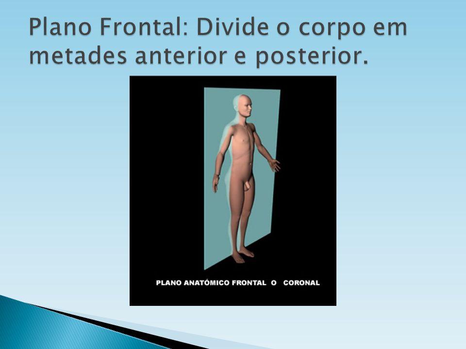 Plano Frontal: Divide o corpo em metades anterior e posterior.