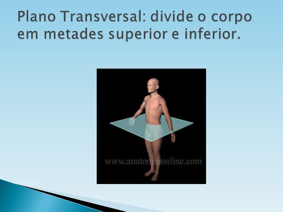Plano Transversal: divide o corpo em metades superior e inferior.