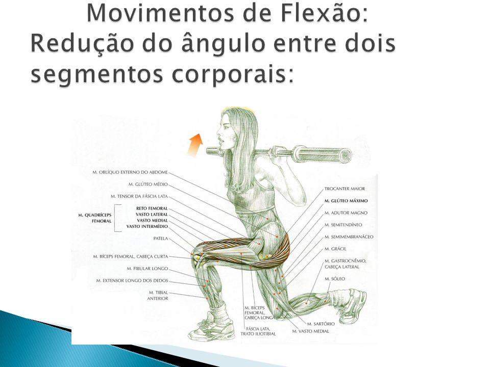 Movimentos de Flexão: Redução do ângulo entre dois segmentos corporais: