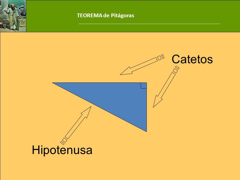 TEOREMA de Pitágoras Catetos Hipotenusa