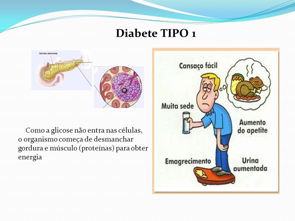 Diabete TIPO 1 Como a glicose não entra nas células,