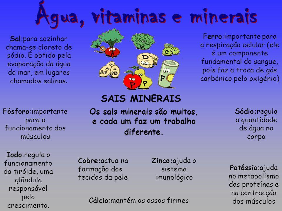 Água, vitaminas e minerais