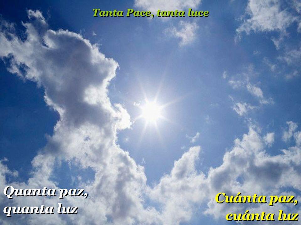 Tanta Pace, tanta luce Quanta paz, quanta luz Cuánta paz, cuánta luz