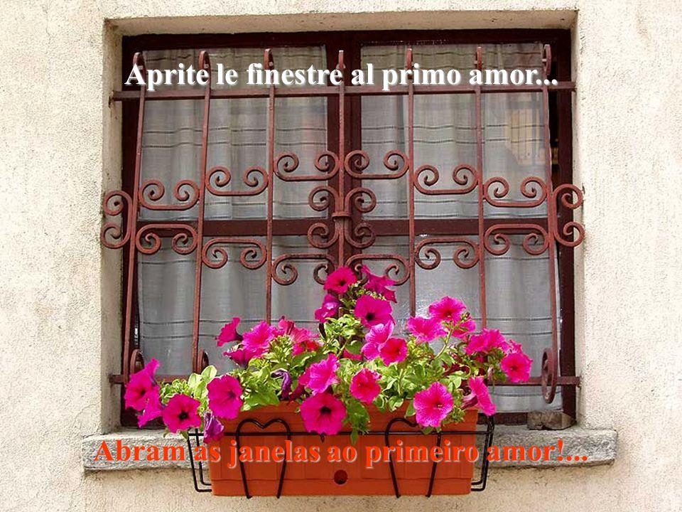 Aprite le finestre al primo amor...