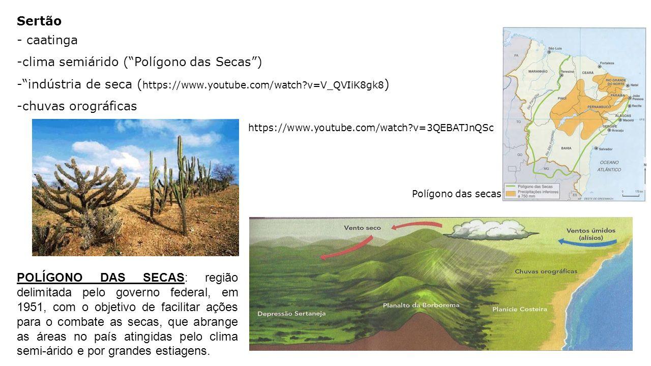 clima semiárido ( Polígono das Secas )