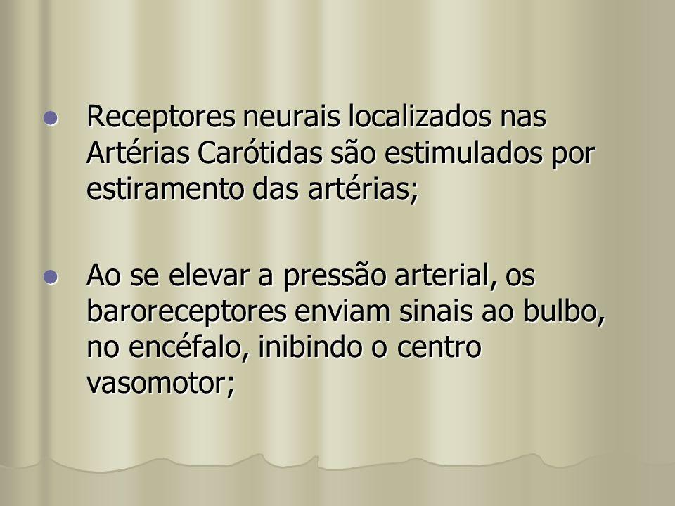 Receptores neurais localizados nas Artérias Carótidas são estimulados por estiramento das artérias;