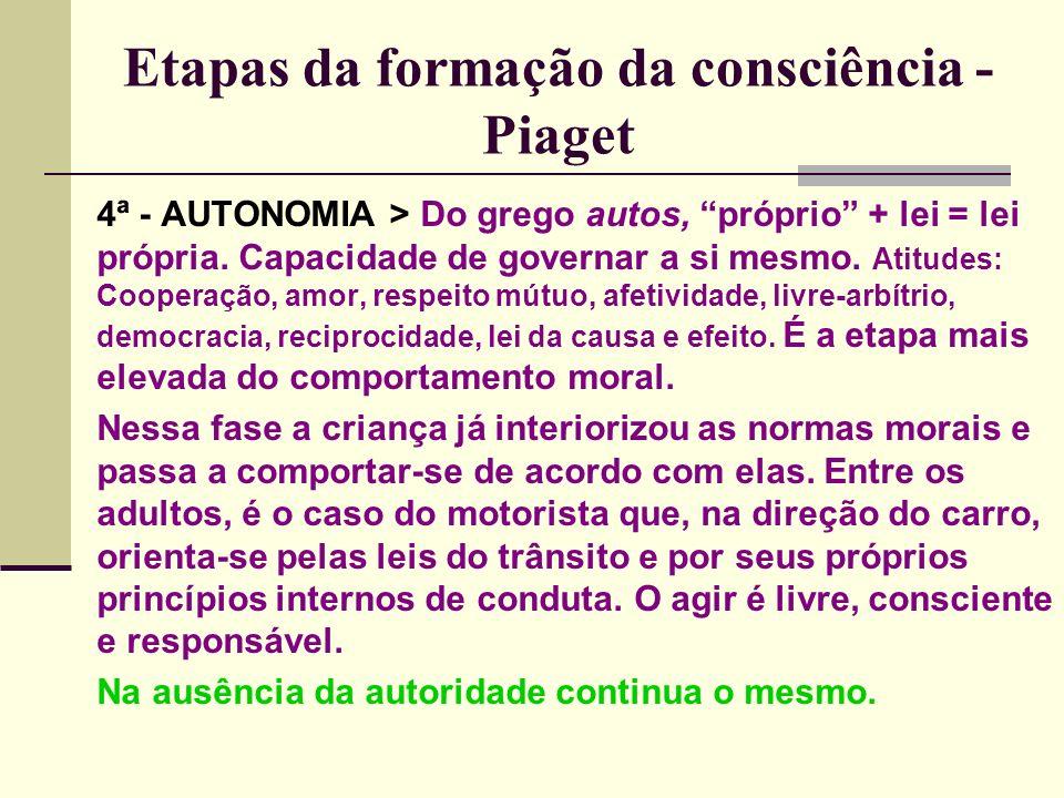 Etapas da formação da consciência - Piaget