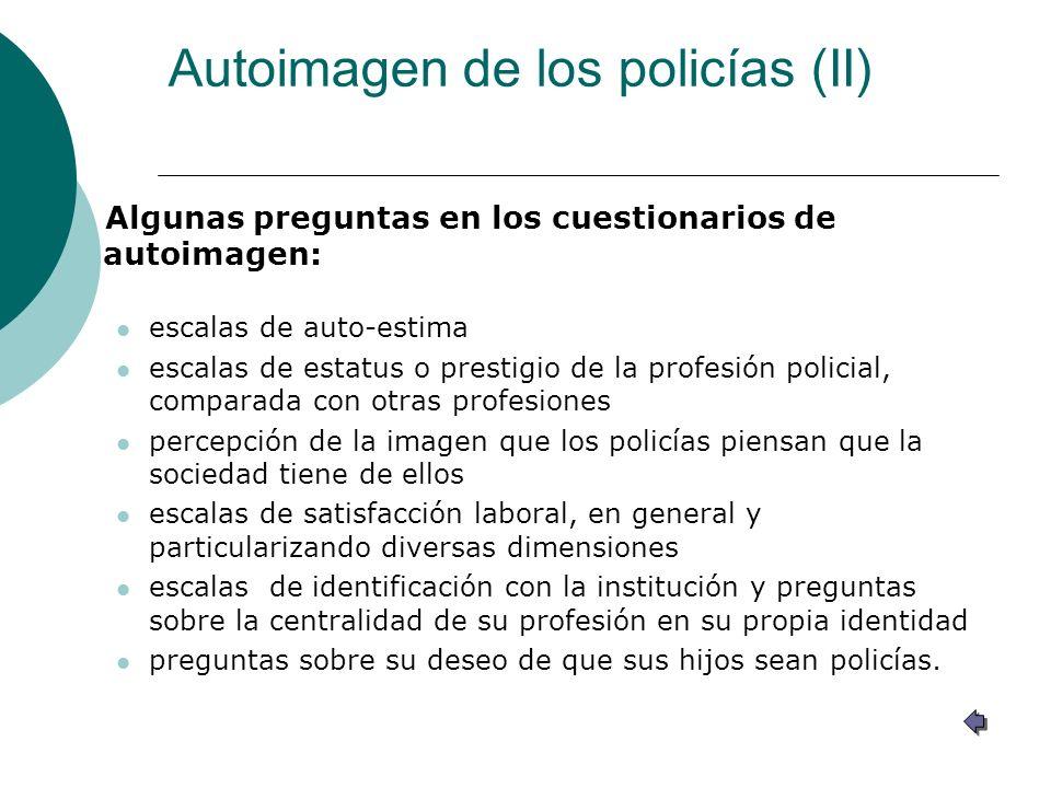 Autoimagen de los policías (II)