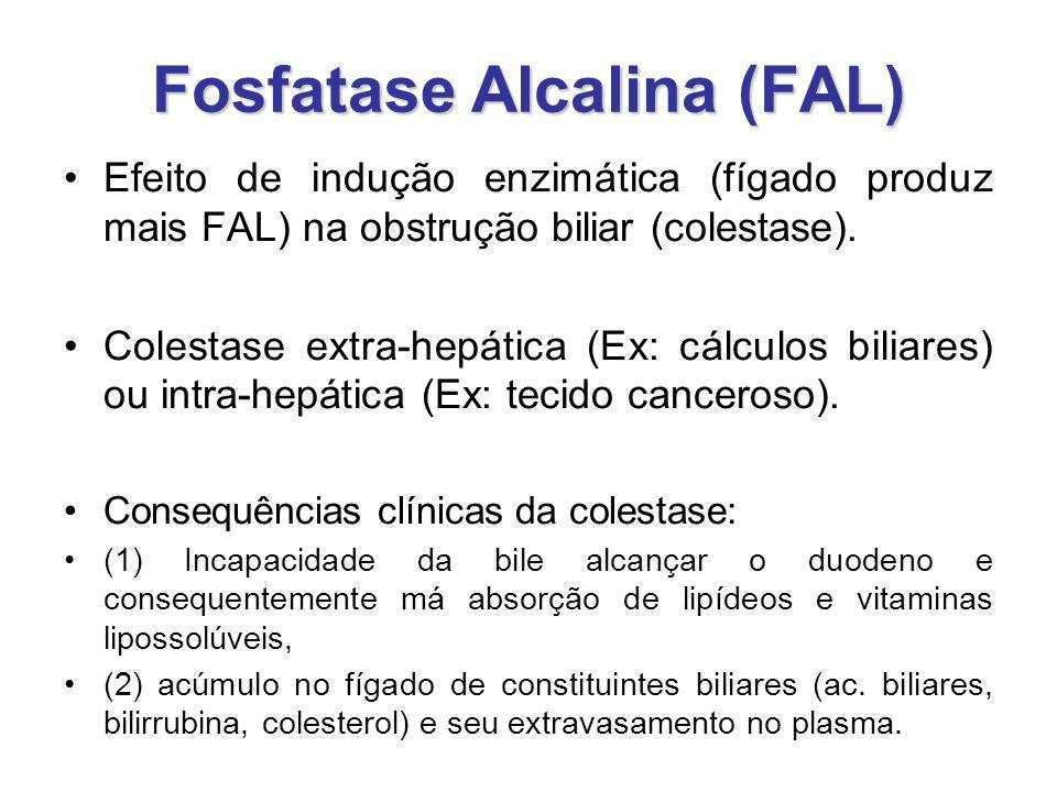 Fosfatase Alcalina (FAL)