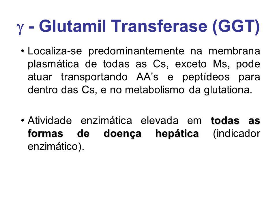  - Glutamil Transferase (GGT)