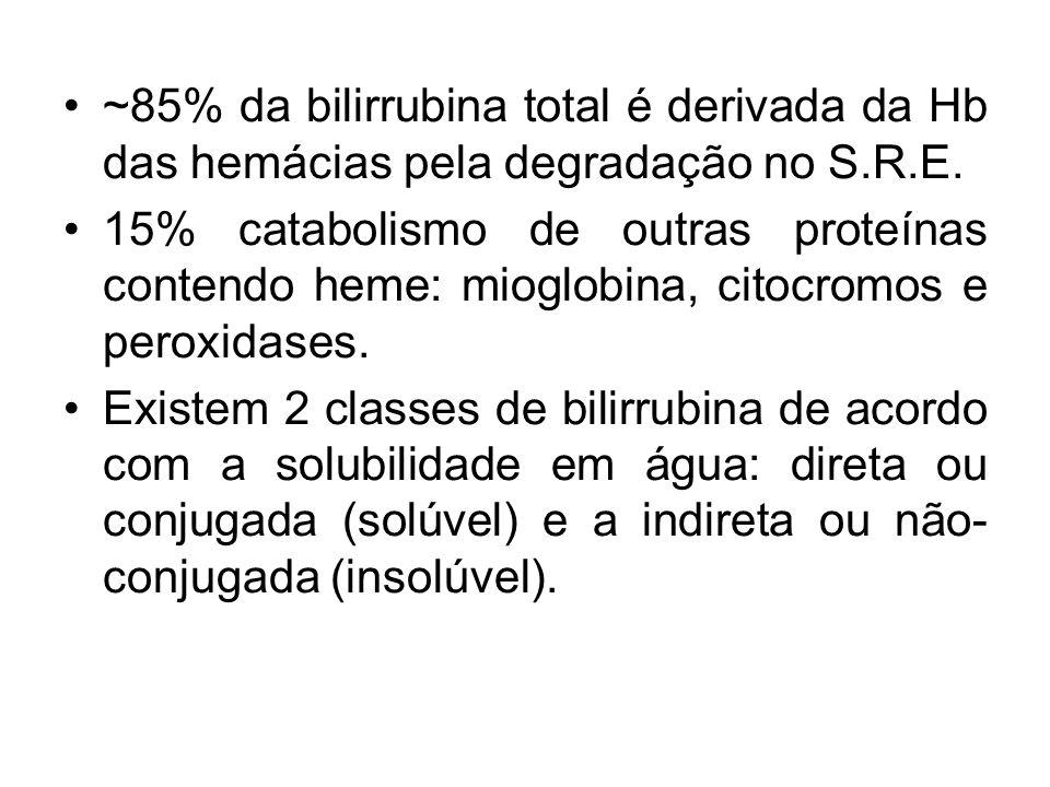 ~85% da bilirrubina total é derivada da Hb das hemácias pela degradação no S.R.E.