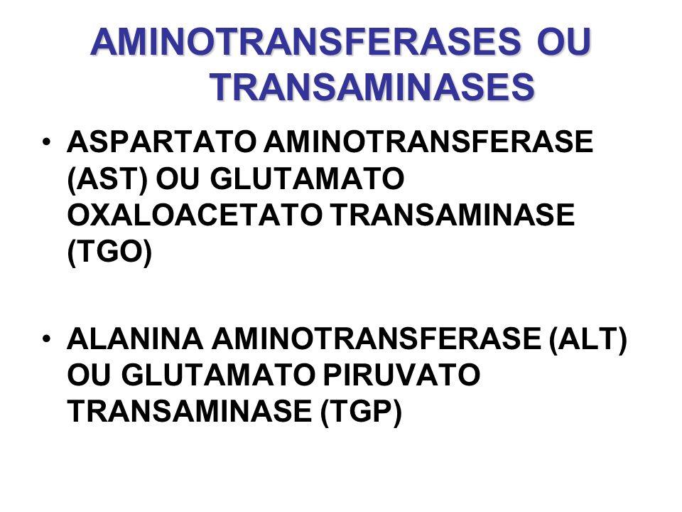 AMINOTRANSFERASES OU TRANSAMINASES