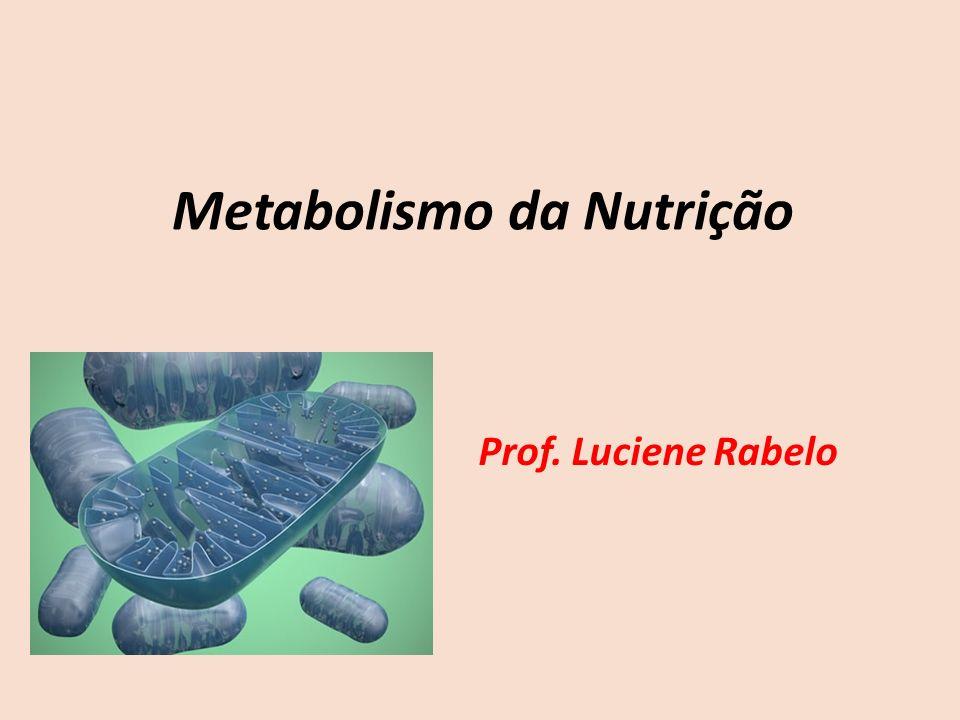 Metabolismo da Nutrição