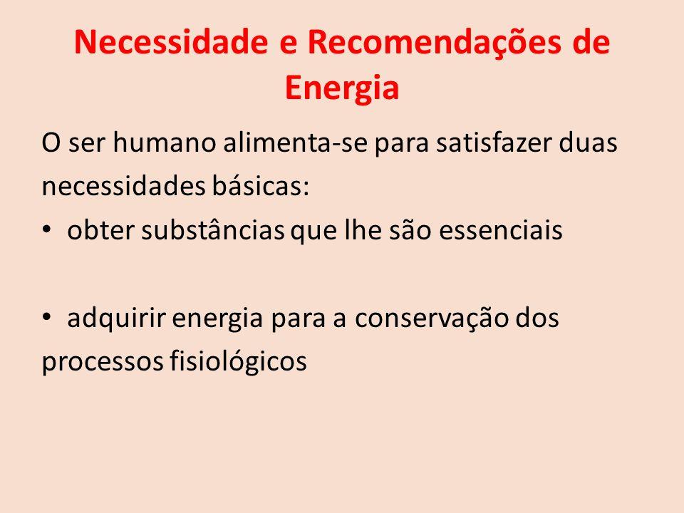 Necessidade e Recomendações de Energia