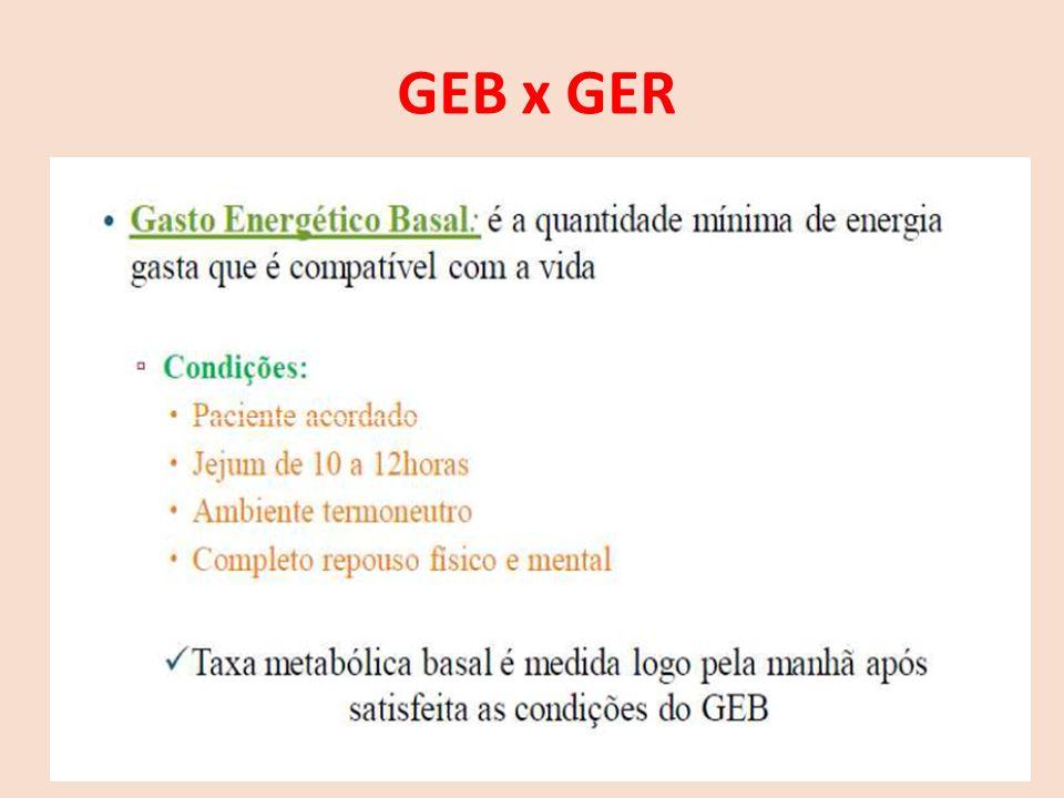 GEB x GER