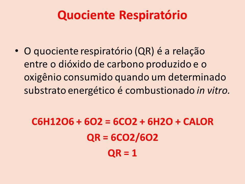 Quociente Respiratório