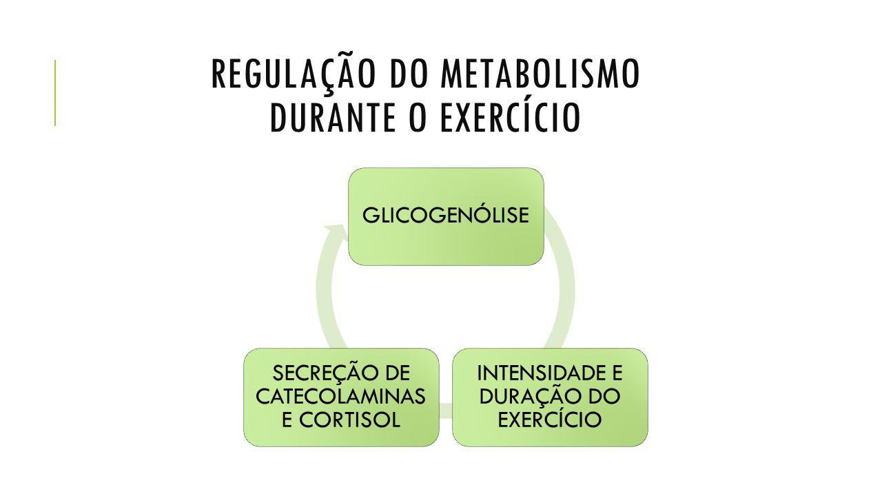 Regulação do metabolismo durante o exercício