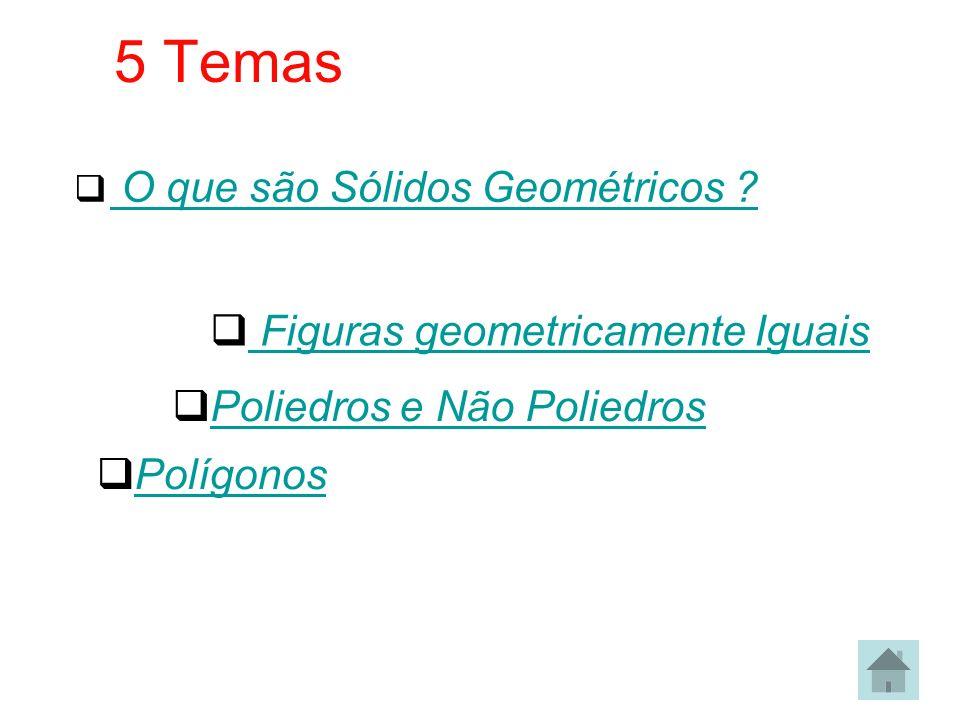 5 Temas Figuras geometricamente Iguais Poliedros e Não Poliedros