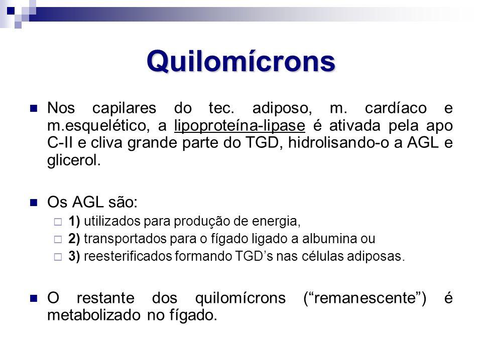 Quilomícrons