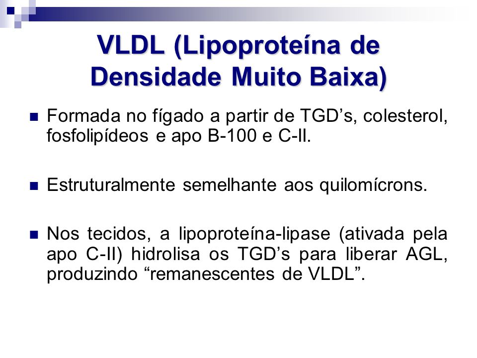 VLDL (Lipoproteína de Densidade Muito Baixa)