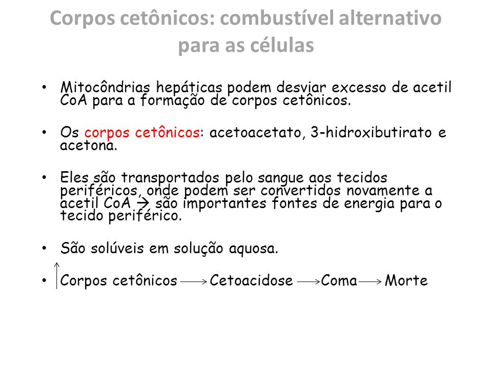 Corpos cetônicos: combustível alternativo para as células