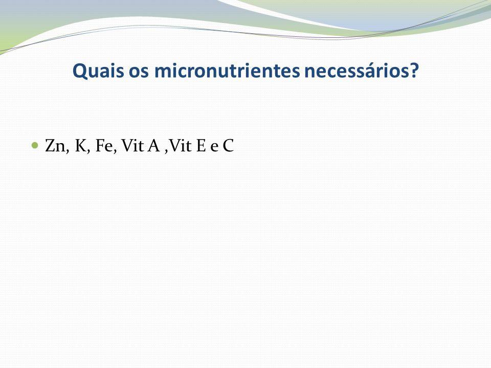 Quais os micronutrientes necessários