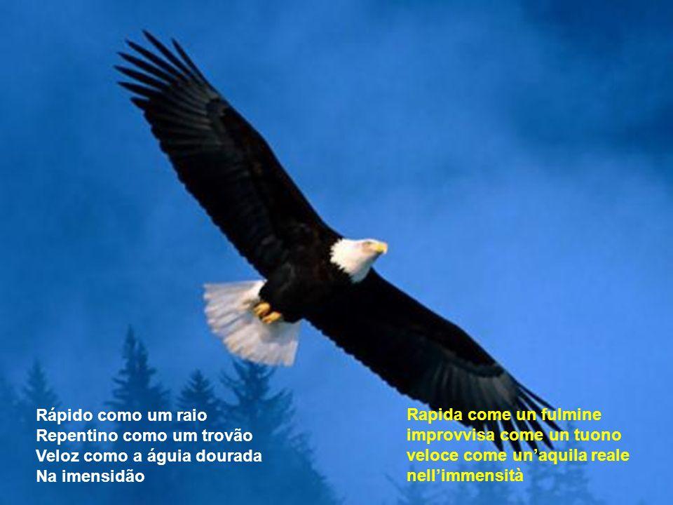 Rápido como um raio Repentino como um trovão Veloz como a águia dourada Na imensidão