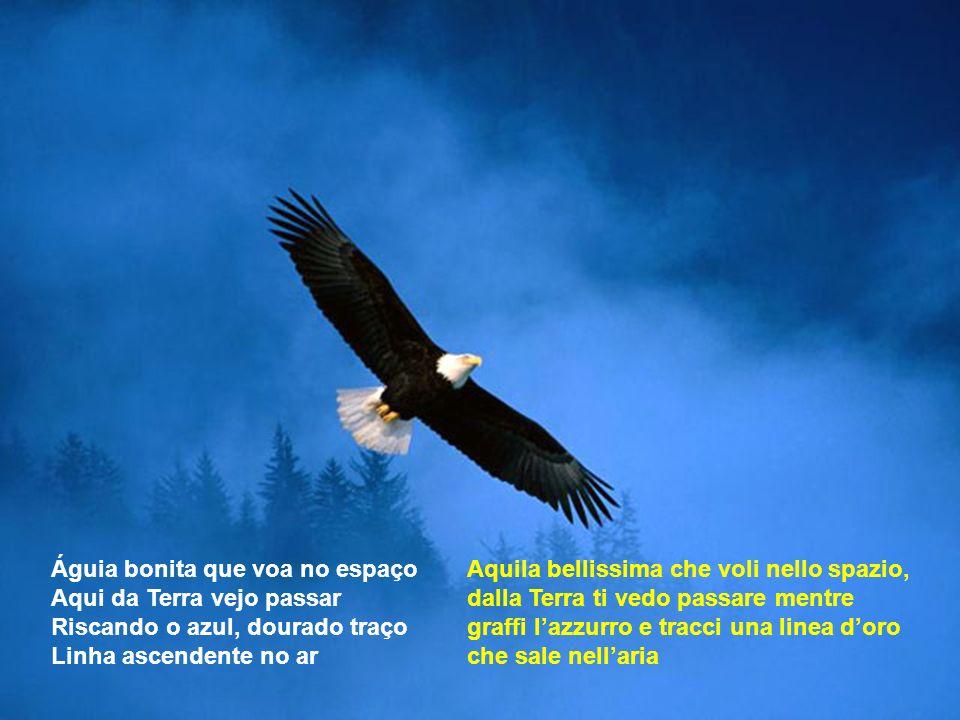 Águia bonita que voa no espaço Aqui da Terra vejo passar Riscando o azul, dourado traço Linha ascendente no ar