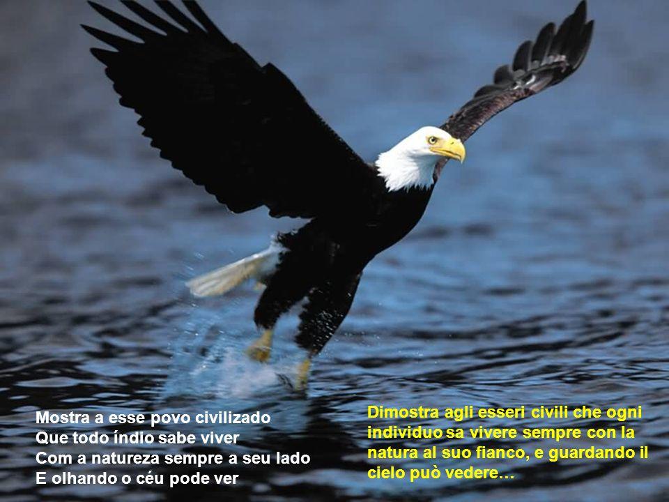 Dimostra agli esseri civili che ogni individuo sa vivere sempre con la natura al suo fianco, e guardando il cielo può vedere…
