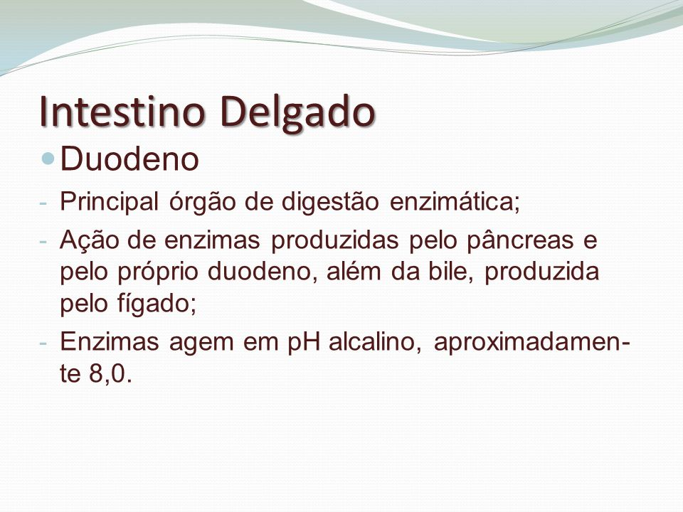 Intestino Delgado Duodeno Principal órgão de digestão enzimática;