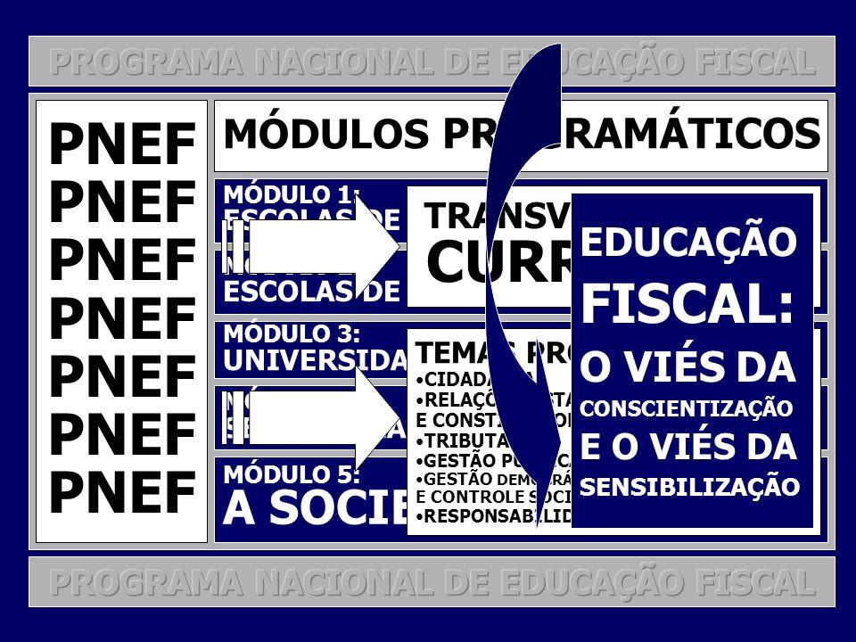 PNEF FISCAL: A SOCIEDADE EM GERAL O VIÉS DA MÓDULOS PROGRAMÁTICOS