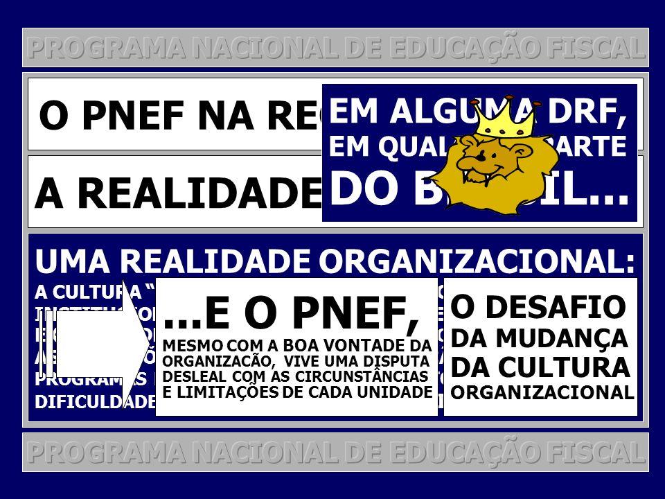DO BRASIL... ...E O PNEF, A REALIDADE COMO ELA É...