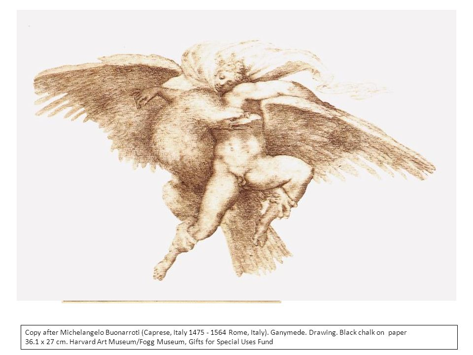 Copy after Michelangelo Buonarroti (Caprese, Italy 1475 - 1564 Rome, Italy). Ganymede. Drawing. Black chalk on paper
